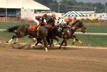 camarero race track