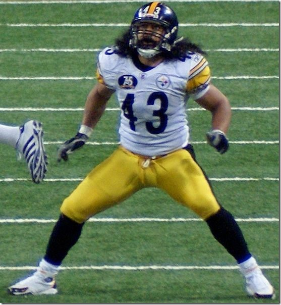 Troy_Polamalu-vsRams-Dec-20-07